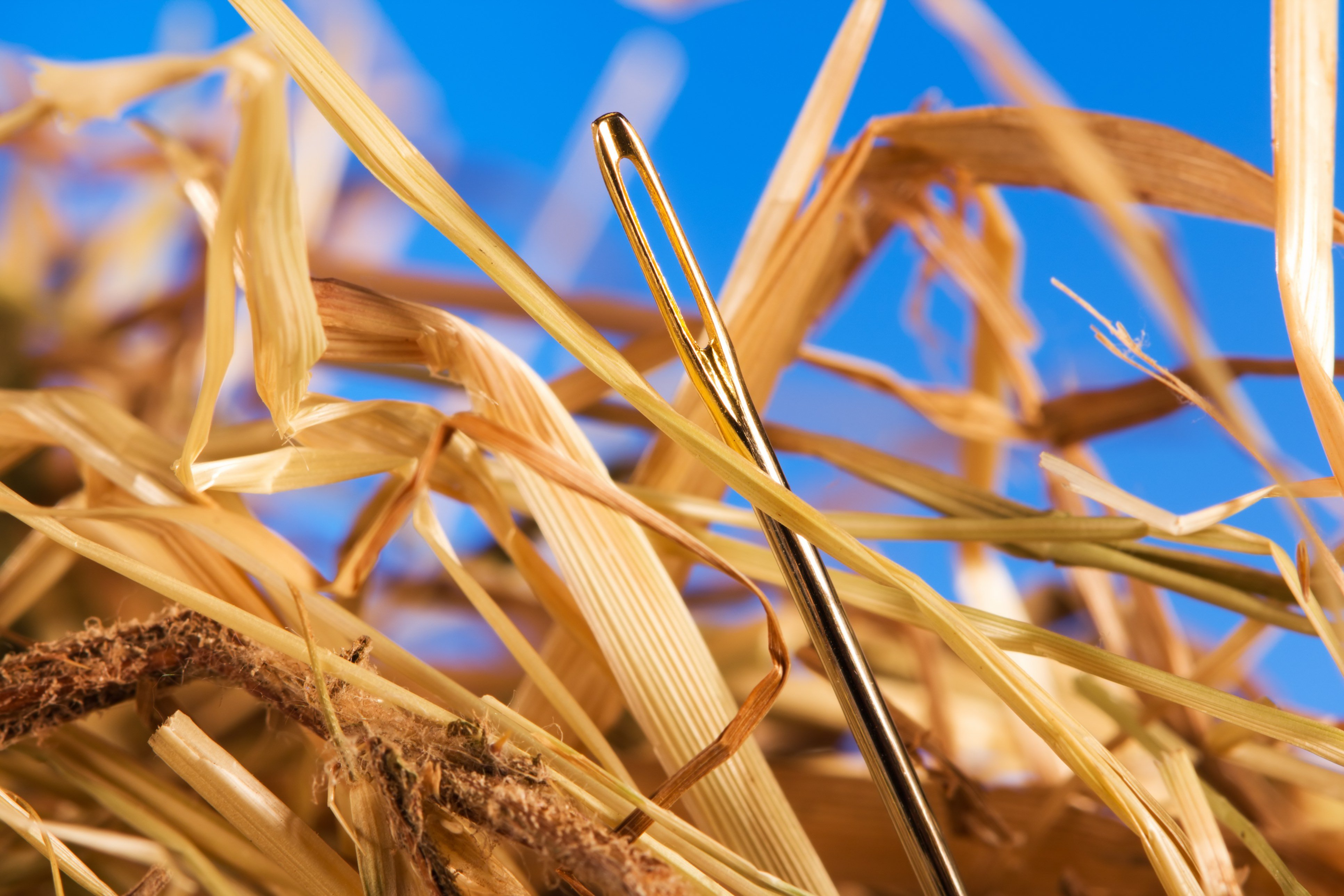 Find Needles Of Actionable Intelligence In Your Big Data Haystack